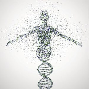 The Human Genome Project has Delivered on its Promise to Treat Disease. Introducing GEMS, the Genetic Enzyme Methylation Syndrome